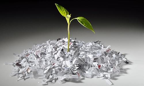 Recykling papieru zmniejsza negatywny wpływ na środowisko